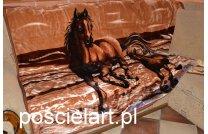 Koc akryl konie