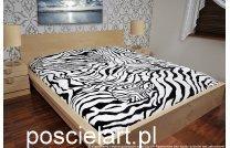 Komplet akryl centki zebra